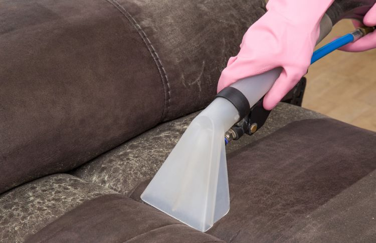 For a clean leather sofa, vaccum regularly to remove dust and grime.