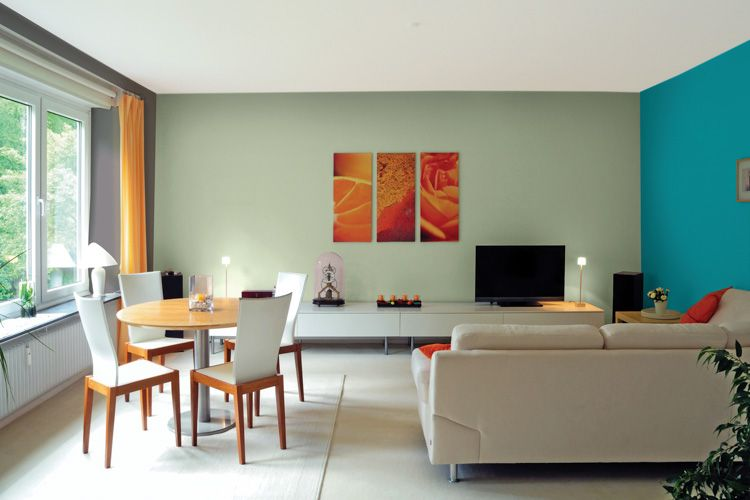 green paint walls-dining table-sofa designs