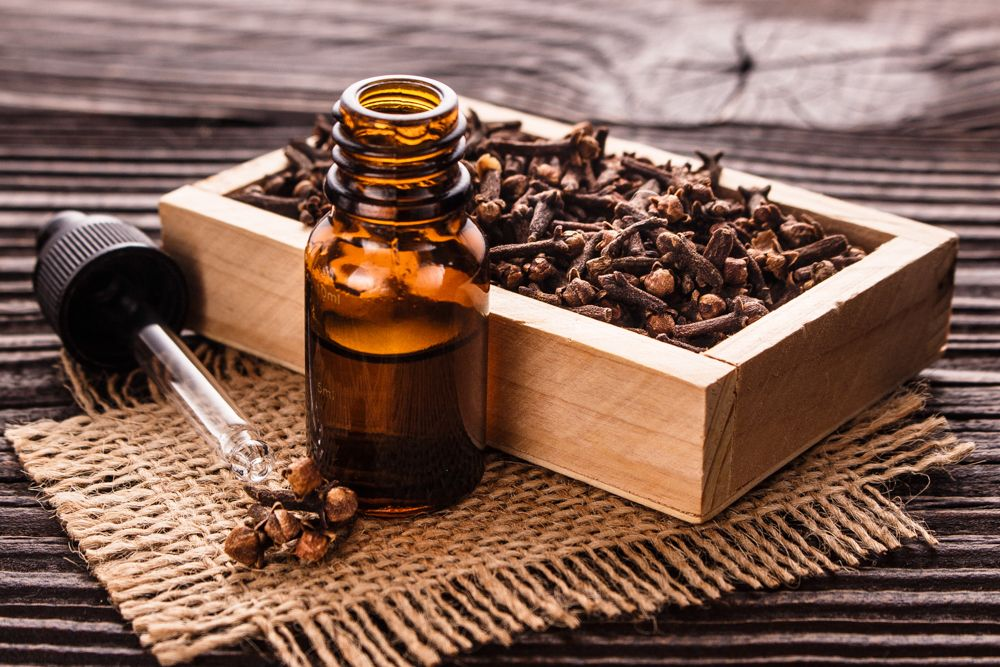 how to get rid of small insects in the kitchen-clove