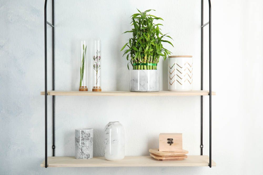 lucky-bamboo-house-plant-hanging-planter