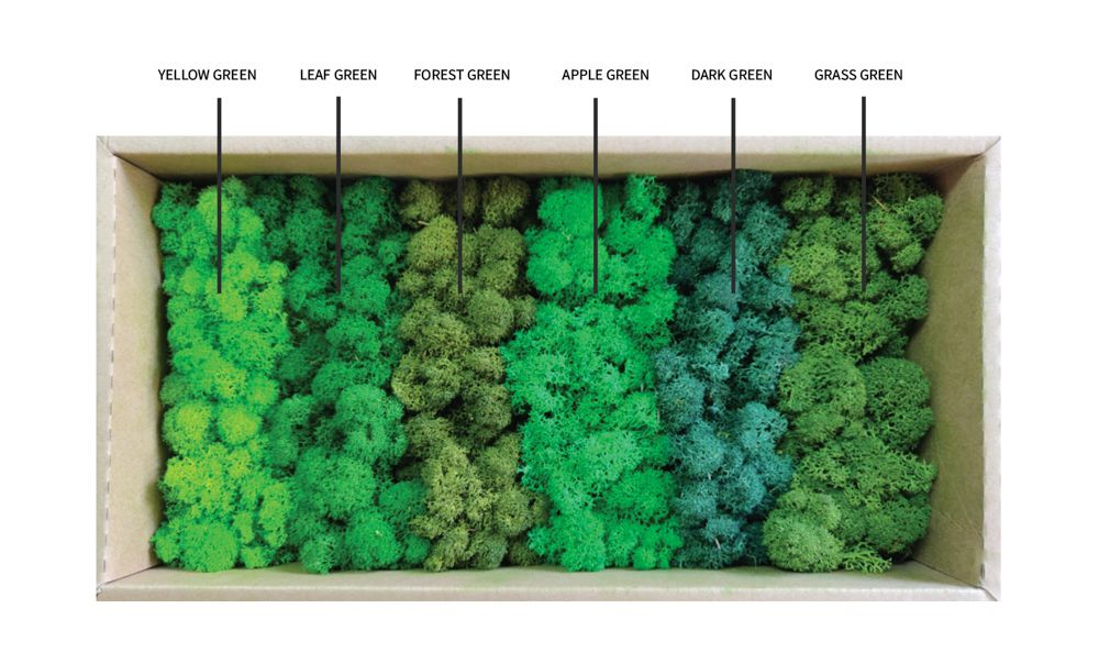Moss frame-colours