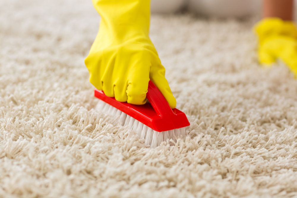 how-to-clean-carpet-brush-scrubbing-rugs