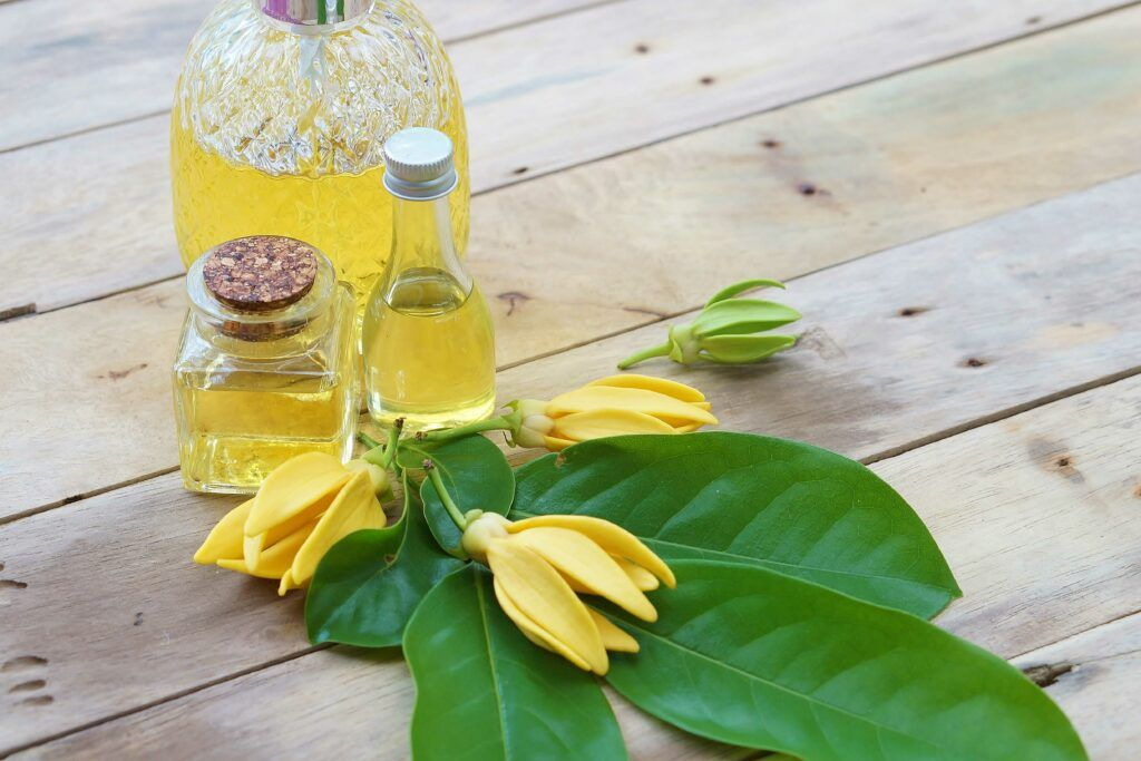 ylang ylang essential oil-yellow